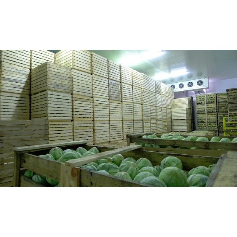 Монтаж овощехранилищ,фруктохранилищ.Подбор холодильного оборудования.