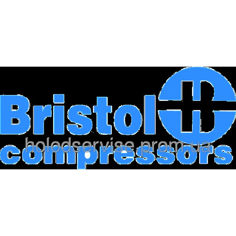 Компрессор Bristol H23A543DBEA (R22)